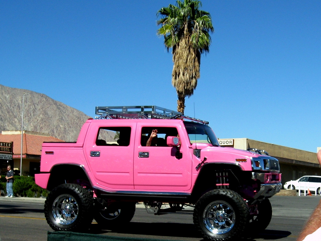 And we have a lovely Hummer in pink.